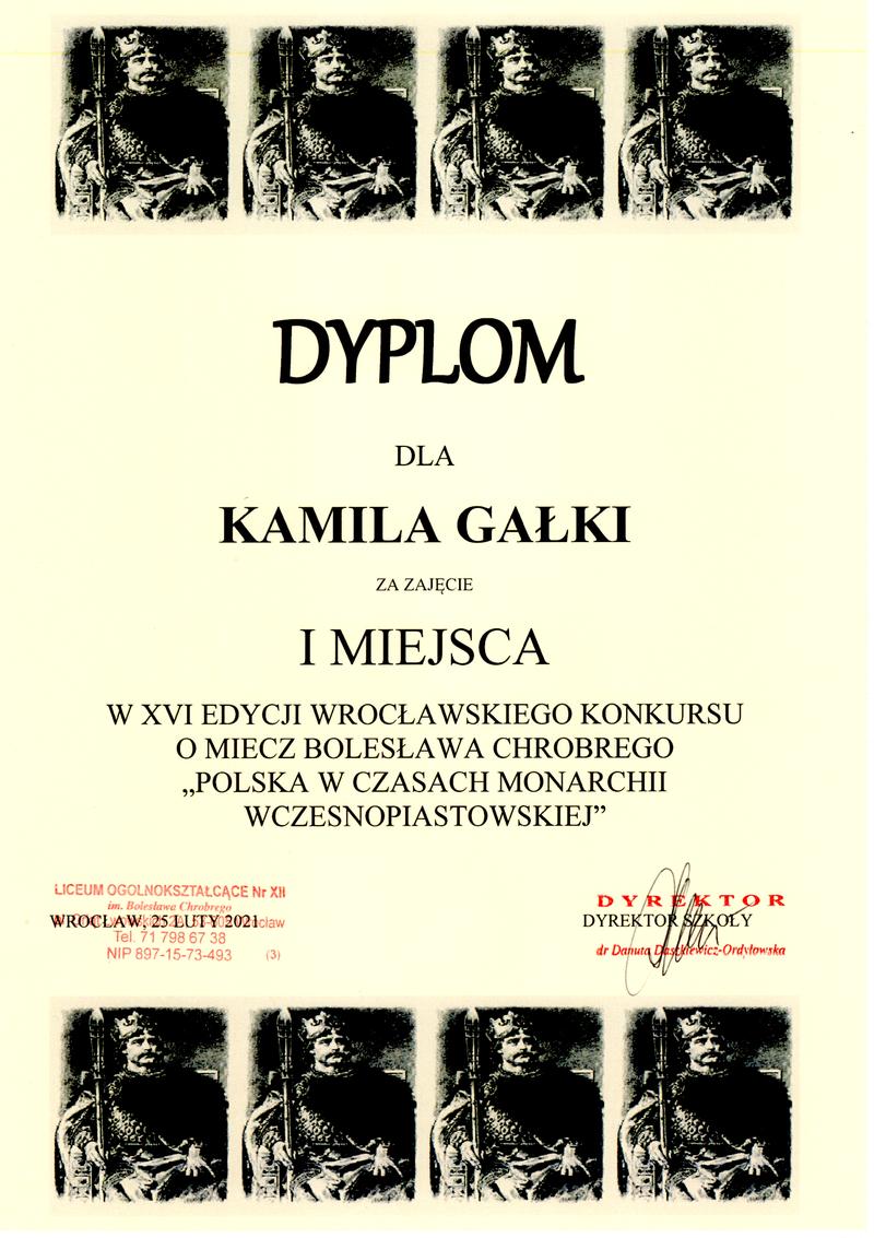 Kamil Gałka - I miejsce.png